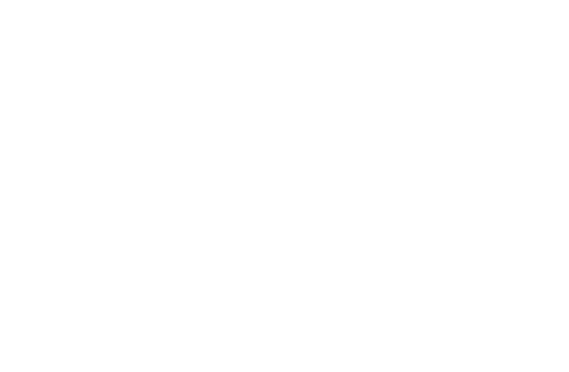 Soulmates Orchestra